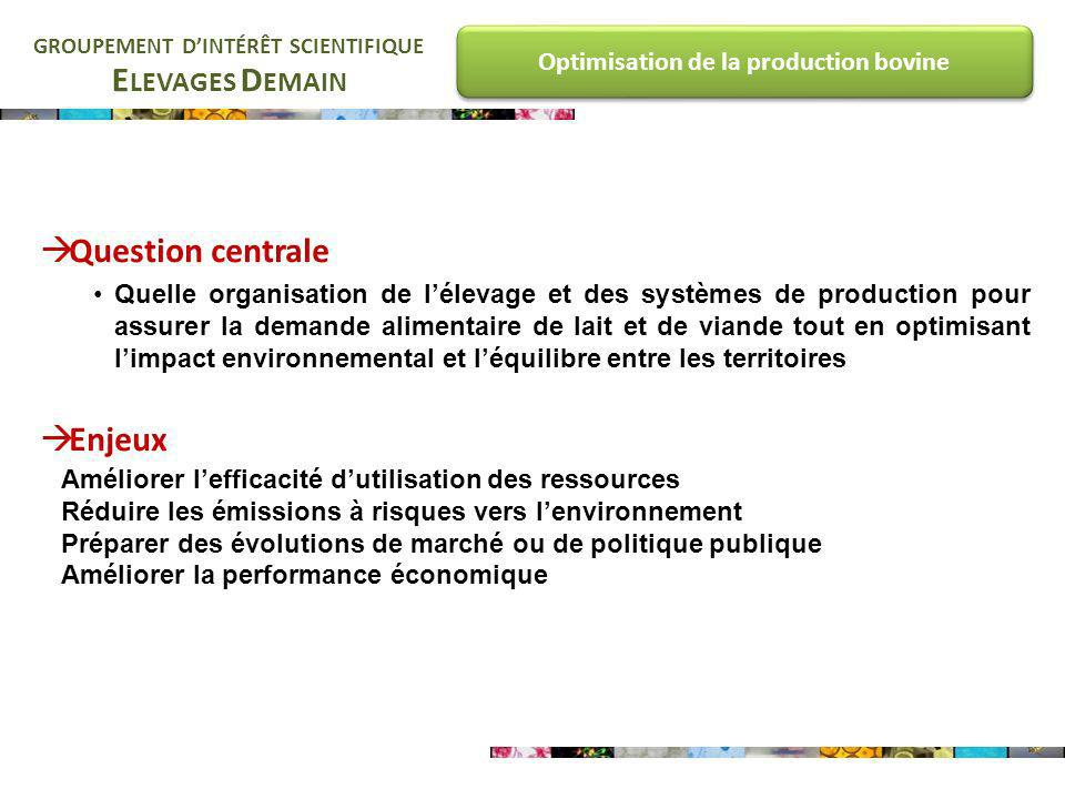 E LEVAGES D EMAIN GROUPEMENT DINTÉRÊT SCIENTIFIQUE Optimisation de la production bovine Question centrale Quelle organisation de lélevage et des systè
