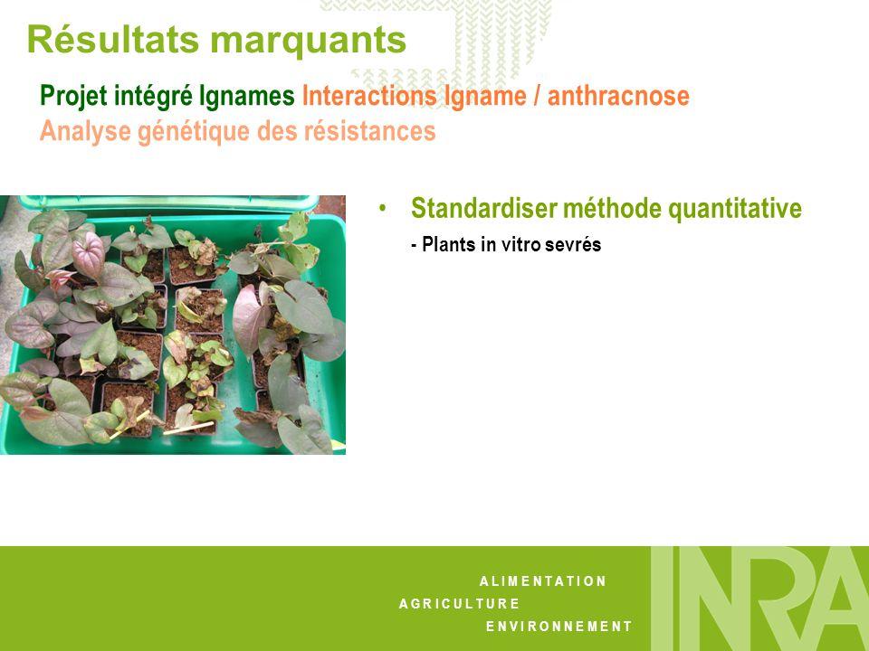 A L I M E N T A T I O N A G R I C U L T U R E E N V I R O N N E M E N T Résultats marquants Standardiser méthode quantitative - Plants in vitro sevrés