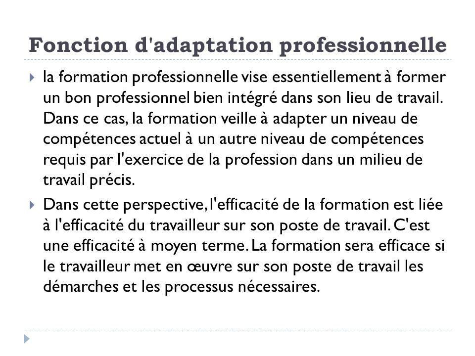 Fonction d'adaptation professionnelle la formation professionnelle vise essentiellement à former un bon professionnel bien intégré dans son lieu de tr