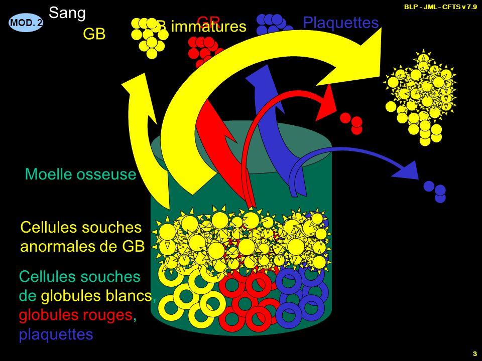 MOD. 2 BLP - JML - CFTS v 7.9 3 Moelle osseuse Cellules souches de globules blancs, globules rouges, plaquettes GB GRPlaquettes Cellules souches anorm