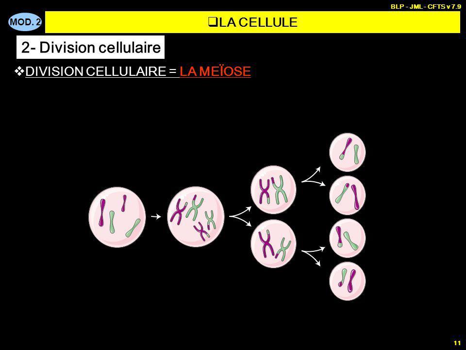 MOD. 2 BLP - JML - CFTS v 7.9 11 DIVISION CELLULAIRE = LA ME Ï OSE LA CELLULE 2- Division cellulaire