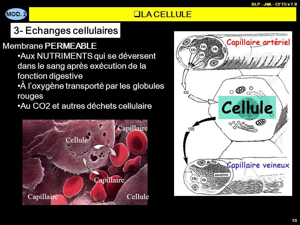 MOD. 2 BLP - JML - CFTS v 7.9 13 Capillaire artériel Capillaire veineux Cellule Membrane PERMEABLE Aux NUTRIMENTS qui se d é versent dans le sang apr