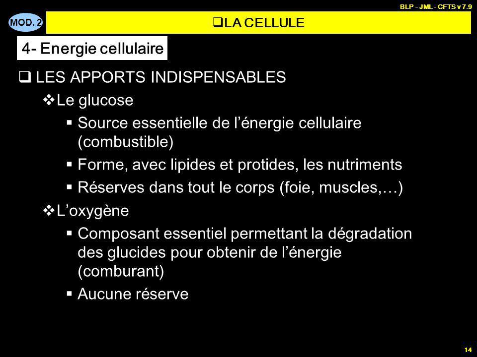 MOD. 2 BLP - JML - CFTS v 7.9 14 LES APPORTS INDISPENSABLES Le glucose Source essentielle de l é nergie cellulaire (combustible) Forme, avec lipides e