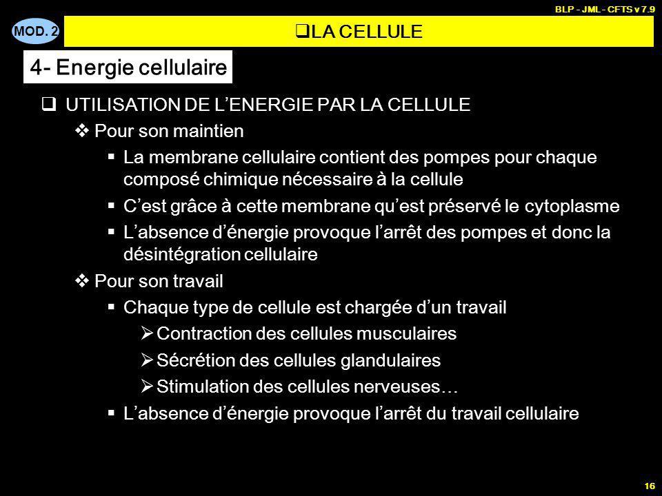 MOD. 2 BLP - JML - CFTS v 7.9 16 UTILISATION DE L ENERGIE PAR LA CELLULE Pour son maintien La membrane cellulaire contient des pompes pour chaque comp