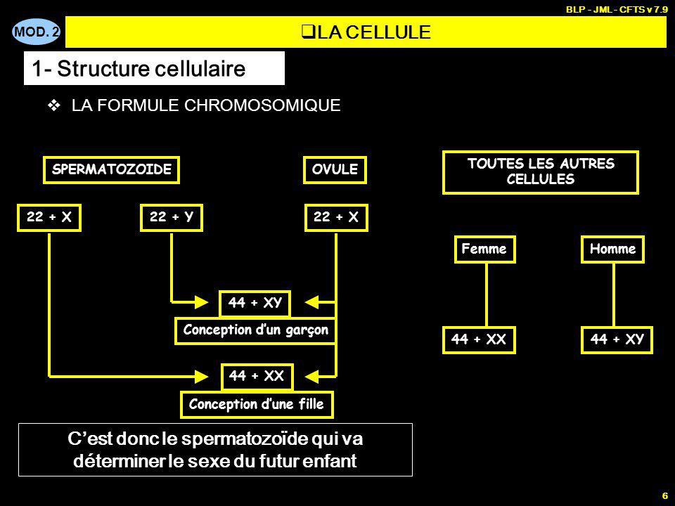 MOD. 2 BLP - JML - CFTS v 7.9 6 LA FORMULE CHROMOSOMIQUE SPERMATOZOIDEOVULE 22 + X22 + Y22 + X 44 + XY 44 + XX Cest donc le spermatozoïde qui va déter