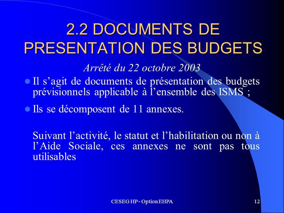 CESEG HP - Option EHPA12 2.2 DOCUMENTS DE PRESENTATION DES BUDGETS Arrêté du 22 octobre 2003 Il sagit de documents de présentation des budgets prévisi