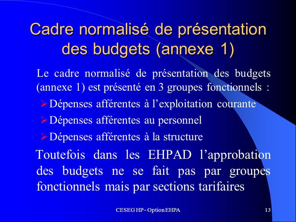 CESEG HP - Option EHPA13 Cadre normalisé de présentation des budgets (annexe 1) Le cadre normalisé de présentation des budgets (annexe 1) est présenté