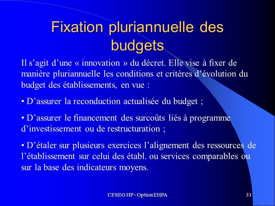 CESEG HP - Option EHPA31 Fixation pluriannuelle des budgets Il sagit dune « innovation » du décret. Elle vise à fixer de manière pluriannuelle les con