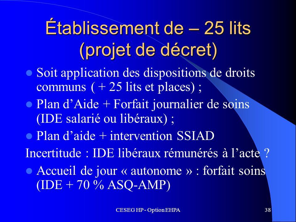 CESEG HP - Option EHPA38 Établissement de – 25 lits (projet de décret) Soit application des dispositions de droits communs ( + 25 lits et places) ; Pl