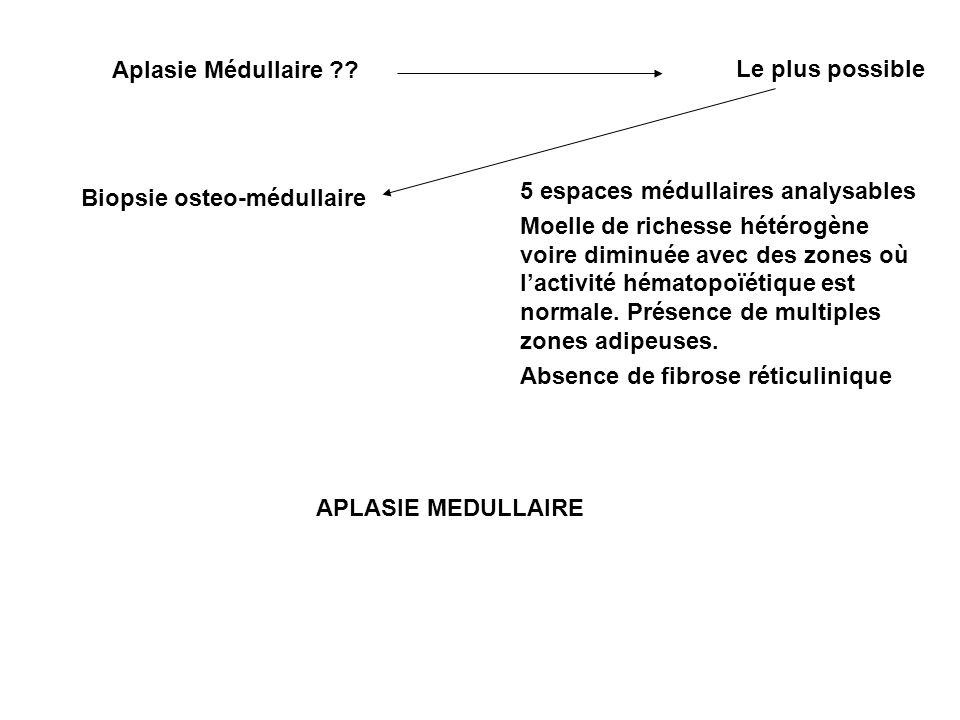 Aplasie Médullaire ?? Le plus possible Biopsie osteo-médullaire 5 espaces médullaires analysables Moelle de richesse hétérogène voire diminuée avec de