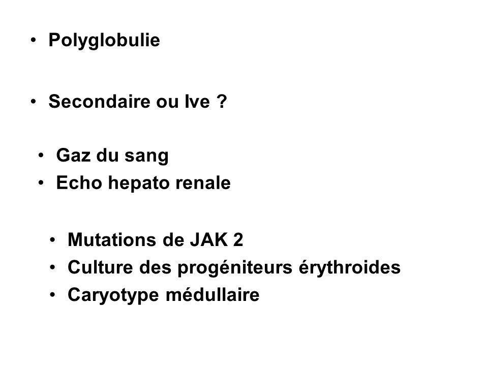 Polyglobulie Secondaire ou Ive ? Gaz du sang Echo hepato renale Mutations de JAK 2 Culture des progéniteurs érythroides Caryotype médullaire