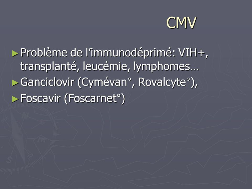 CMV CMV Problème de limmunodéprimé: VIH+, transplanté, leucémie, lymphomes… Problème de limmunodéprimé: VIH+, transplanté, leucémie, lymphomes… Gancic