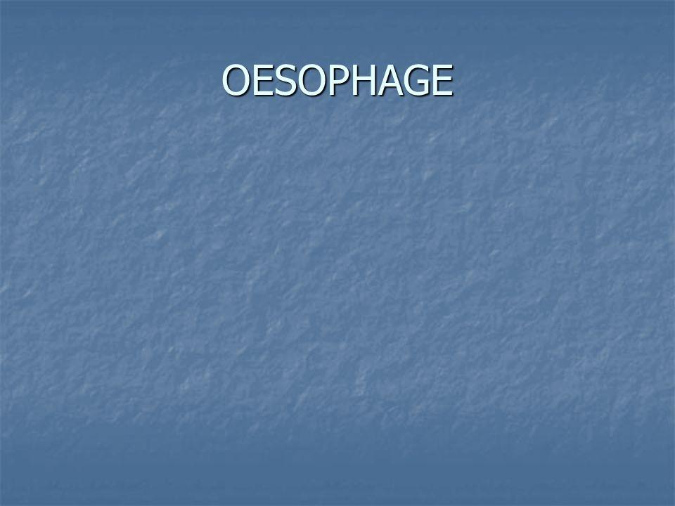 OESOPHAGE