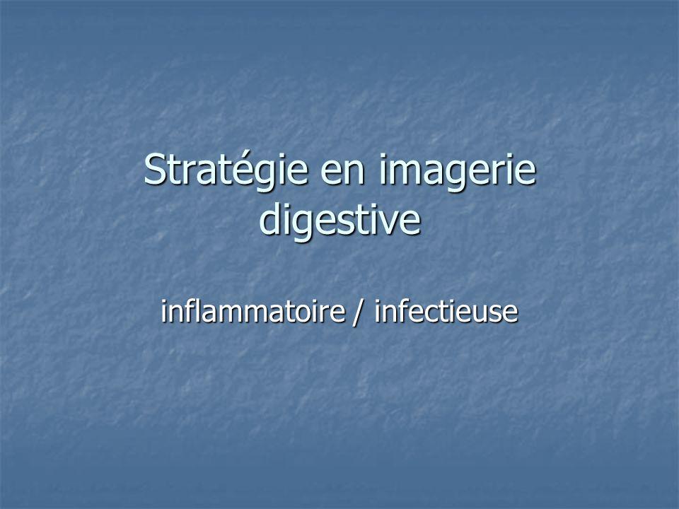 Stratégie en imagerie digestive inflammatoire / infectieuse