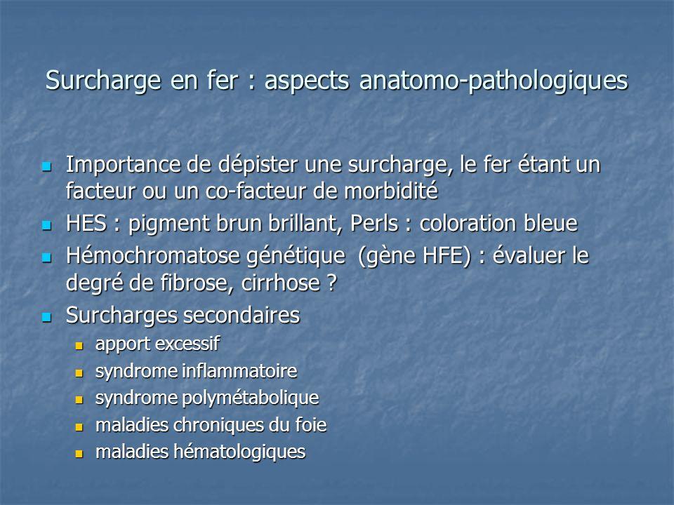 Surcharge en fer : aspects anatomo-pathologiques Importance de dépister une surcharge, le fer étant un facteur ou un co-facteur de morbidité Importanc