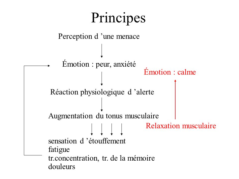 Principes Émotion : peur, anxiété Réaction physiologique d alerte Perception d une menace Augmentation du tonus musculaire sensation d étouffement fat