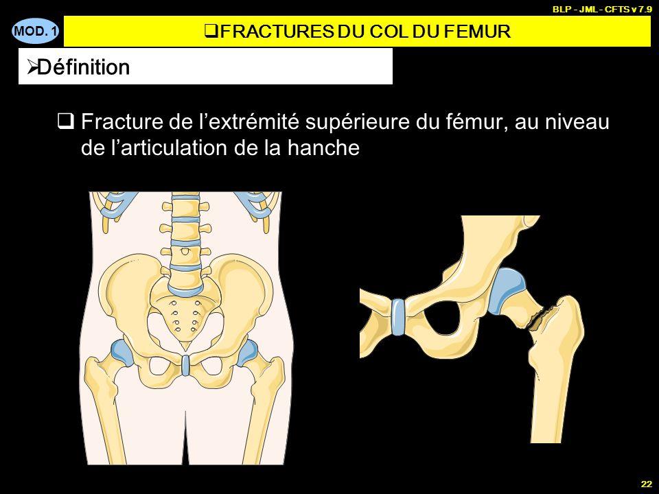 MOD. 1 BLP - JML - CFTS v 7.9 22 Fracture de lextrémité supérieure du fémur, au niveau de larticulation de la hanche Définition FRACTURES DU COL DU FE