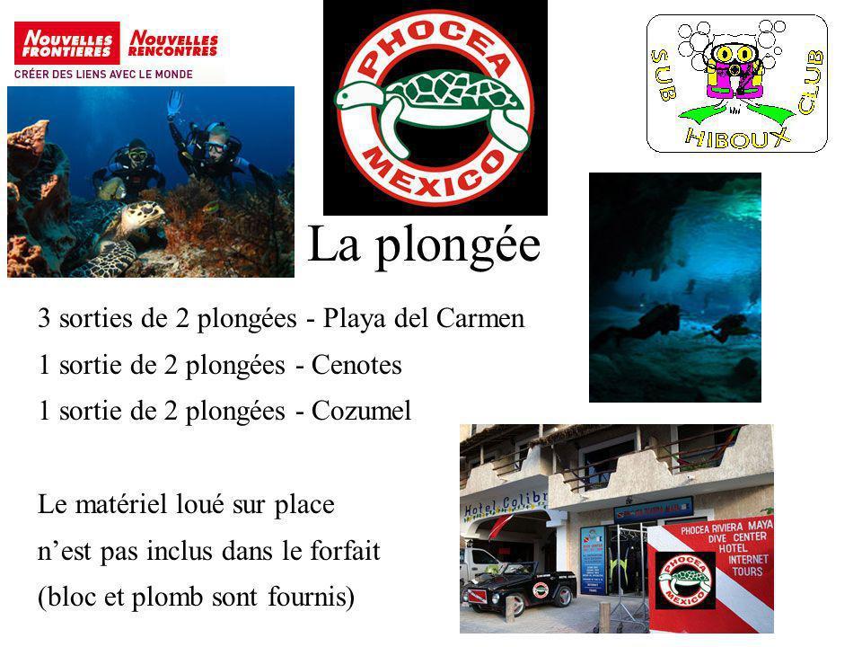 La plongée 3 sorties de 2 plongées - Playa del Carmen 1 sortie de 2 plongées - Cenotes 1 sortie de 2 plongées - Cozumel Le matériel loué sur place nest pas inclus dans le forfait (bloc et plomb sont fournis)