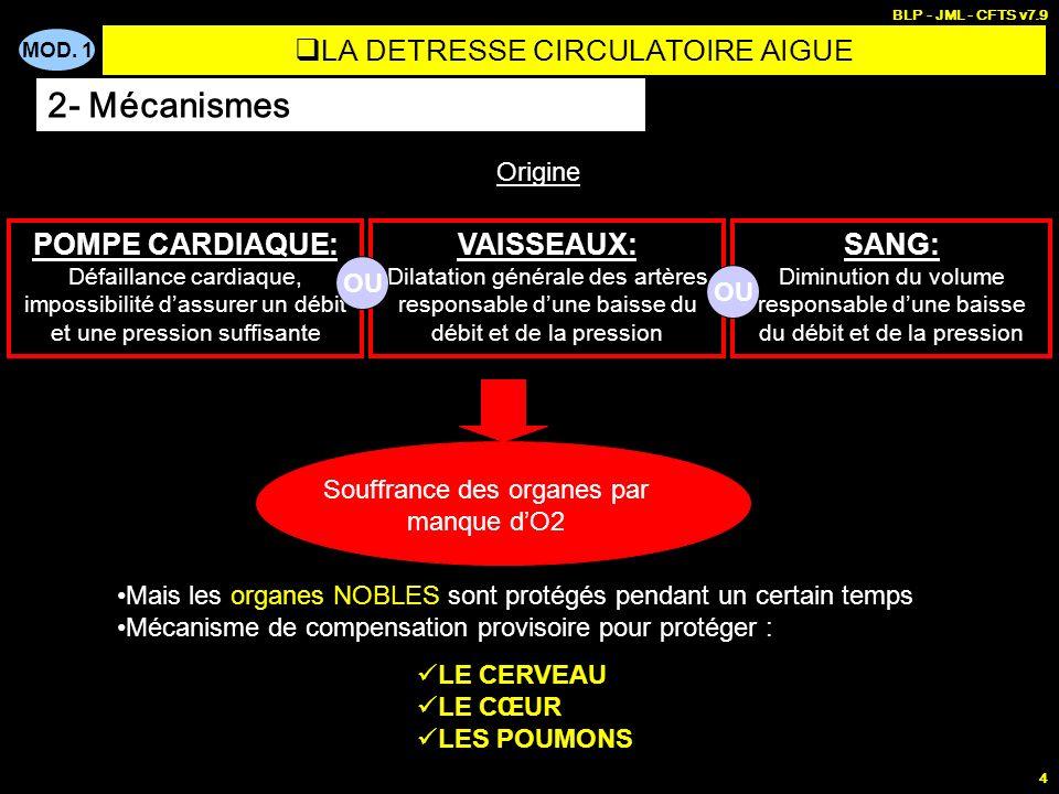 MOD. 1 BLP - JML - CFTS v7.9 4 VAISSEAUX: Dilatation générale des artères responsable dune baisse du débit et de la pression SANG: Diminution du volum