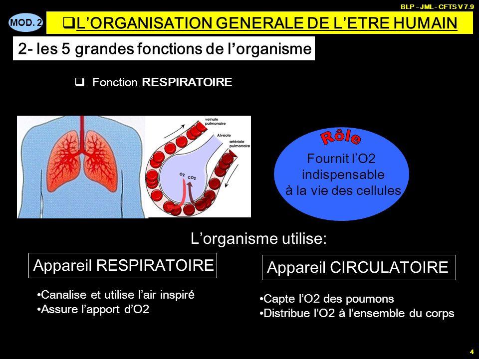 MOD. 2 BLP - JML - CFTS V 7.9 4 Fonction RESPIRATOIRE Fournit l O2 indispensable à la vie des cellules Appareil RESPIRATOIRE Appareil CIRCULATOIRE Can