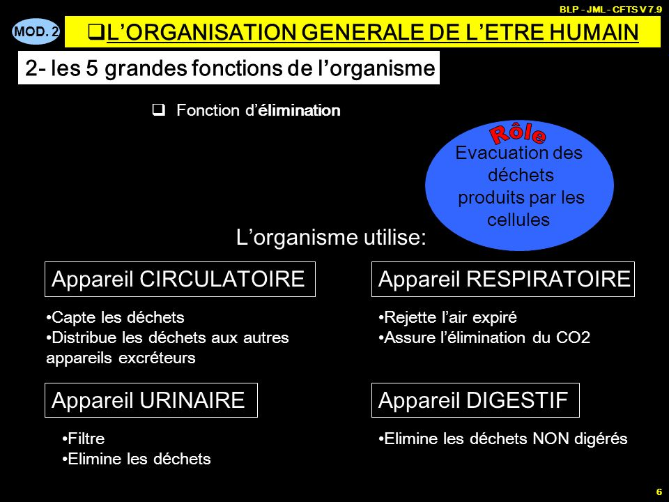 MOD. 2 BLP - JML - CFTS V 7.9 6 Fonction délimination Evacuation des d é chets produits par les cellules Appareil RESPIRATOIREAppareil CIRCULATOIRE Re