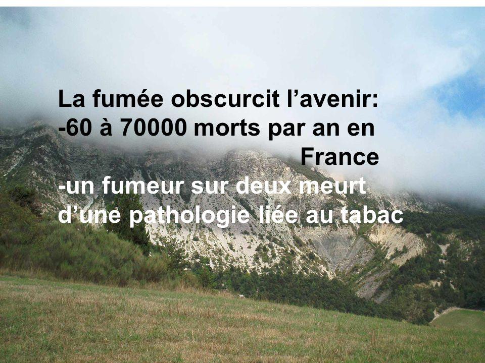 La fumée obscurcit lavenir: -60 à 70000 morts par an en France -un fumeur sur deux meurt dune pathologie liée au tabac