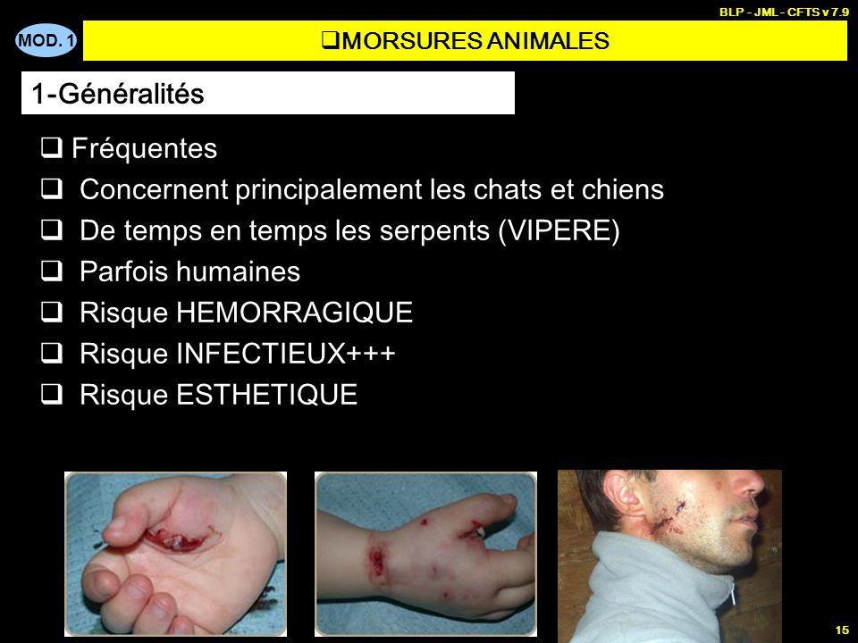 MOD. 1 BLP - JML - CFTS v 7.9 15 MORSURES ANIMALES Fréquentes Concernent principalement les chats et chiens De temps en temps les serpents (VIPERE) Pa