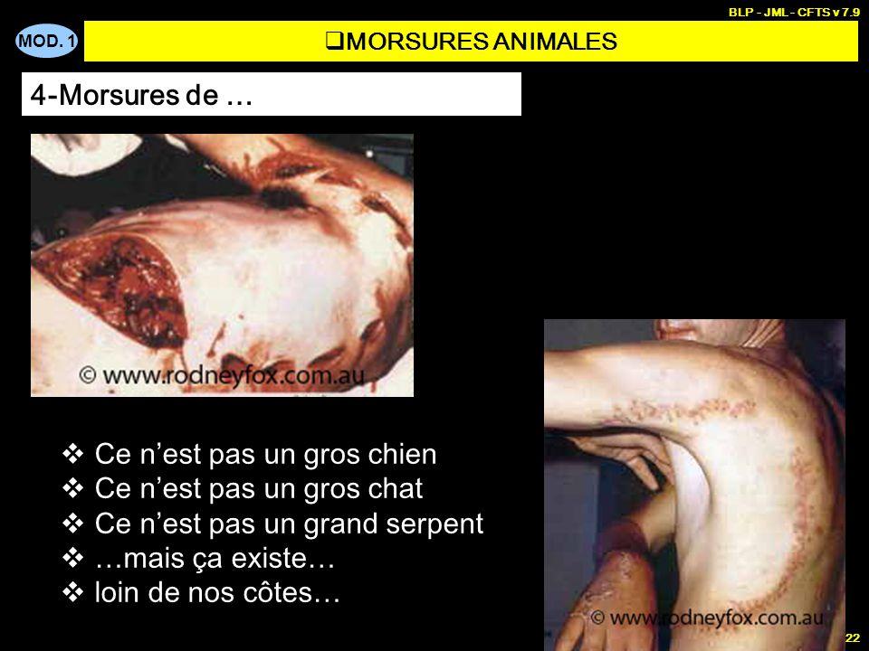 MOD. 1 BLP - JML - CFTS v 7.9 22 MORSURES ANIMALES 4-Morsures de … Ce n est pas un gros chien Ce n est pas un gros chat Ce n est pas un grand serpent