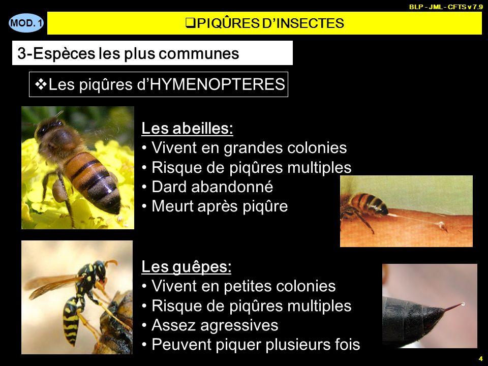 MOD. 1 BLP - JML - CFTS v 7.9 4 PIQÛRES DINSECTES 3-Espèces les plus communes Les piq û res d HYMENOPTERES Les abeilles: Vivent en grandes colonies Ri