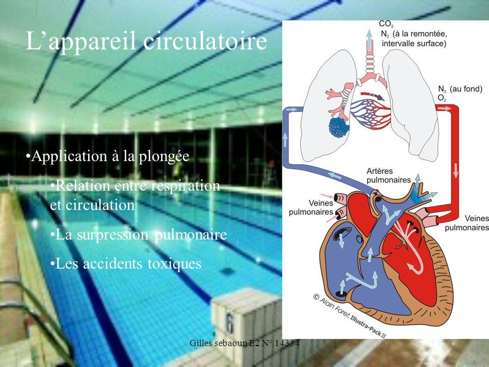 Gilles sebaoun E2 N° 14334 Application à la plongée Relation entre respiration et circulation La surpression pulmonaire Les accidents toxiques Lappare