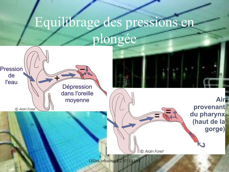 Gilles sebaoun E2 N° 14334 Equilibrage des pressions en plongée