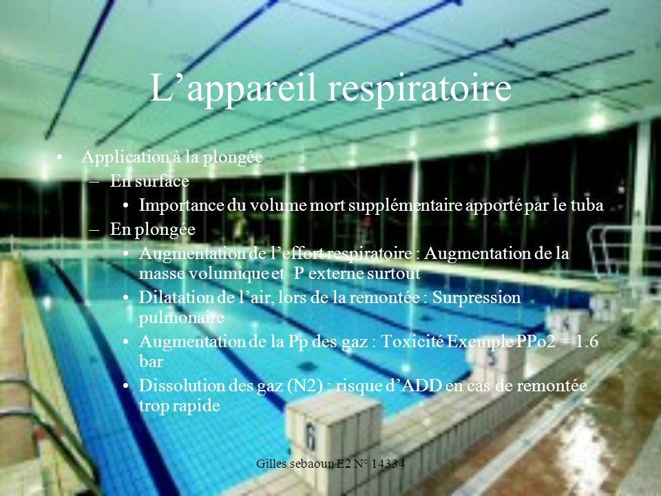 Gilles sebaoun E2 N° 14334 Lappareil respiratoire Application à la plongée –En surface Importance du volume mort supplémentaire apporté par le tuba –E