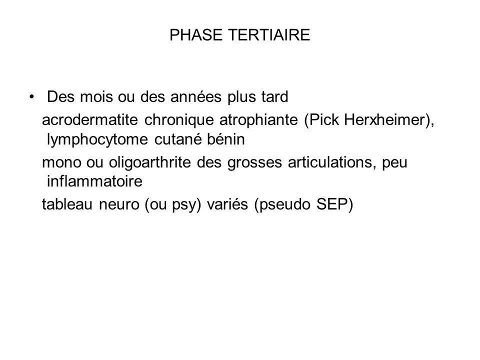 PHASE TERTIAIRE Des mois ou des années plus tard acrodermatite chronique atrophiante (Pick Herxheimer), lymphocytome cutané bénin mono ou oligoarthrit