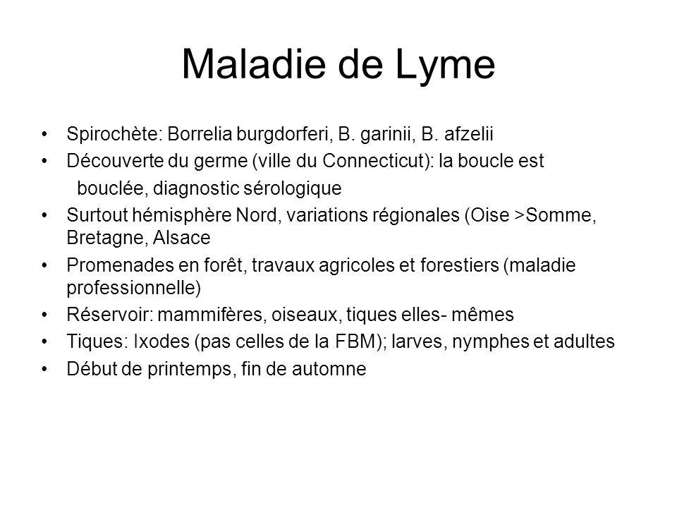 Maladie de Lyme Spirochète: Borrelia burgdorferi, B. garinii, B. afzelii Découverte du germe (ville du Connecticut): la boucle est bouclée, diagnostic
