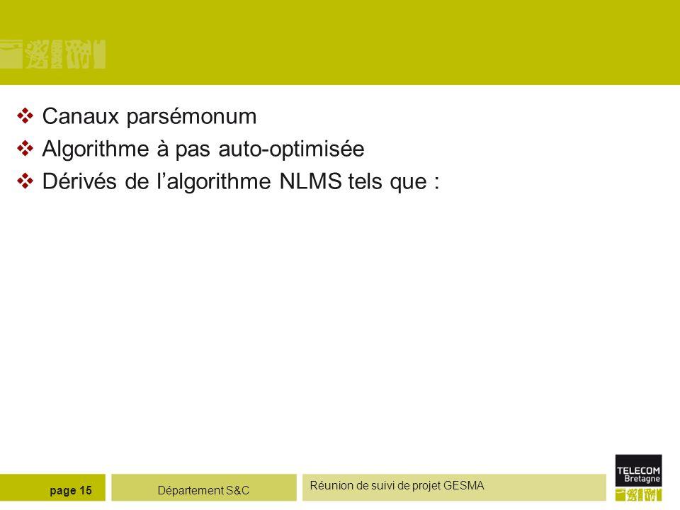 Département S&C Réunion de suivi de projet GESMA page 15 Canaux parsémonum Algorithme à pas auto-optimisée Dérivés de lalgorithme NLMS tels que :