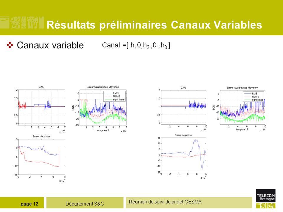 Département S&C Réunion de suivi de projet GESMA page 12 Résultats préliminaires Canaux Variables Canaux variable Canal =[ h 1 0,h 2,0.h 3 ]