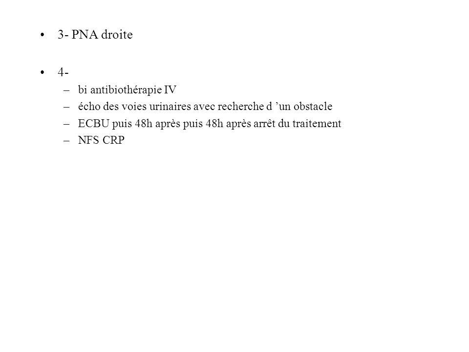 3- PNA droite 4- –bi antibiothérapie IV –écho des voies urinaires avec recherche d un obstacle –ECBU puis 48h après puis 48h après arrêt du traitement