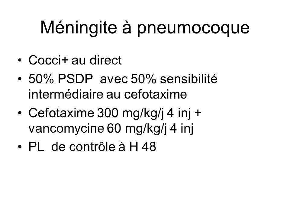 Méningite à pneumocoque Cocci+ au direct 50% PSDP avec 50% sensibilité intermédiaire au cefotaxime Cefotaxime 300 mg/kg/j 4 inj + vancomycine 60 mg/kg