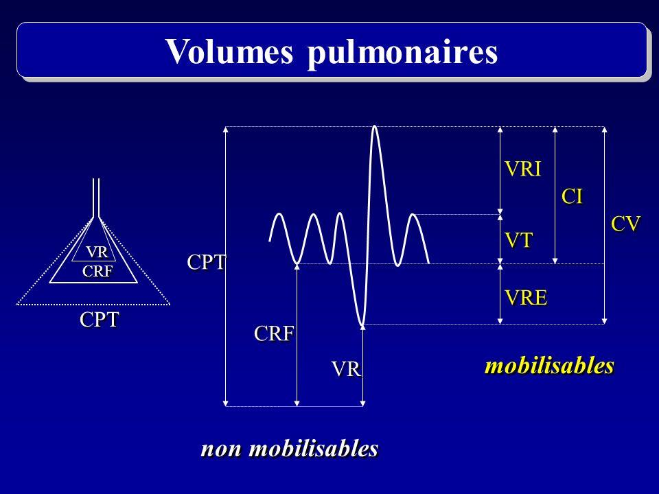 CPT VR CRF Muscles inspiratoires Muscles expiratoires Paroi thoraco-abdominale Paroi thoraco-abdominale Pression rétraction élastique pulmonaire Pression rétraction élastique pulmonaire Volumes pulmonaires