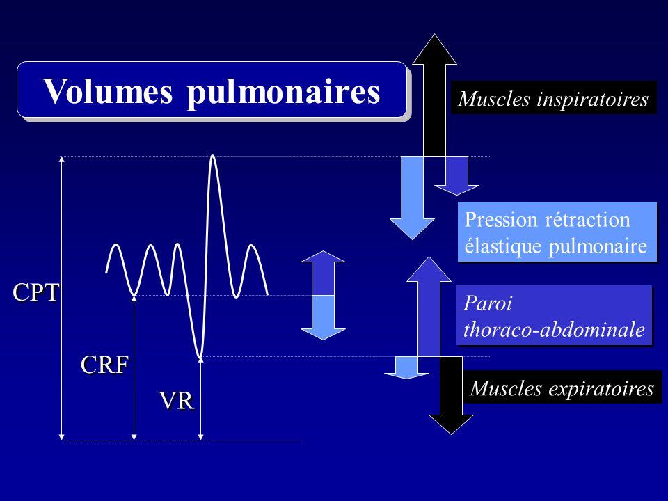 CPT VR CRF Muscles inspiratoires Muscles expiratoires Paroi thoraco-abdominale Paroi thoraco-abdominale Pression rétraction élastique pulmonaire Press