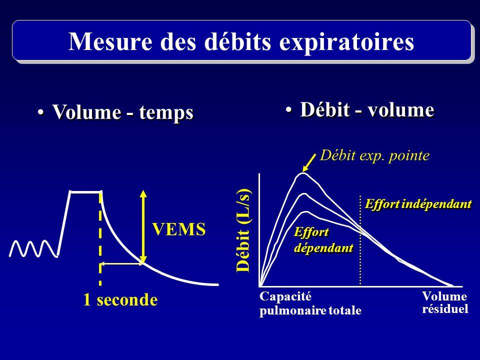 Volume - temps Débit - volume VEMS 1 seconde Capacité pulmonaire totale Volume résiduel Débit (L/s) Débit exp. pointe Effort indépendant Effort dépend