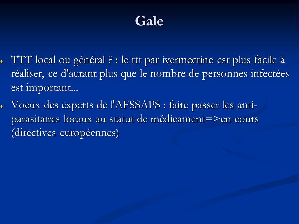 Gale TTT local ou général .