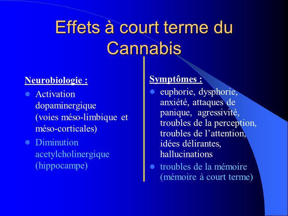 Effets à court terme du Cannabis Neurobiologie : Activation dopaminergique (voies méso-limbique et méso-corticales) Diminution acetylcholinergique (hi