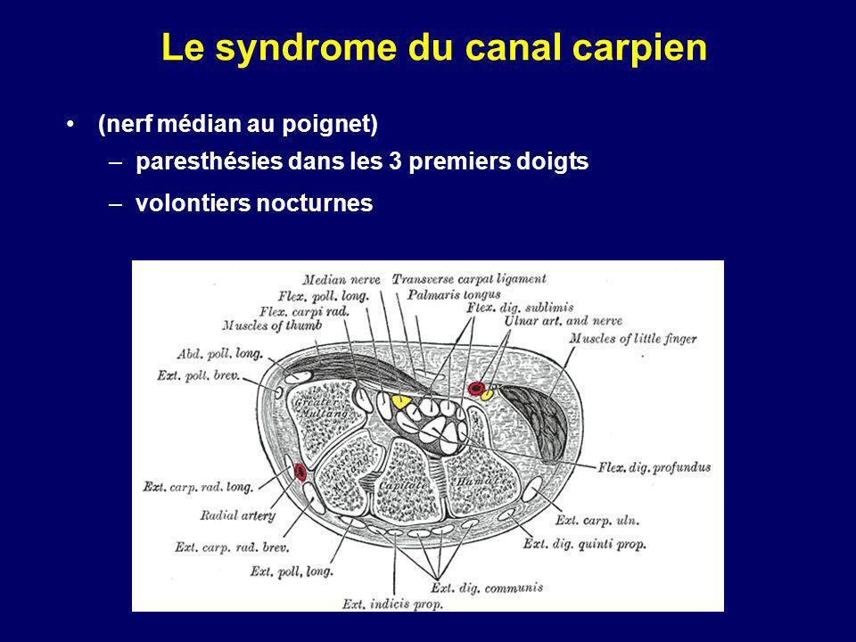 -Radiographies: rachis cervical F+P Hypertrophie transverses de C7