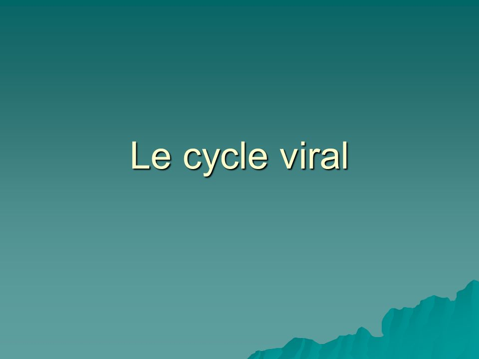Le cycle viral