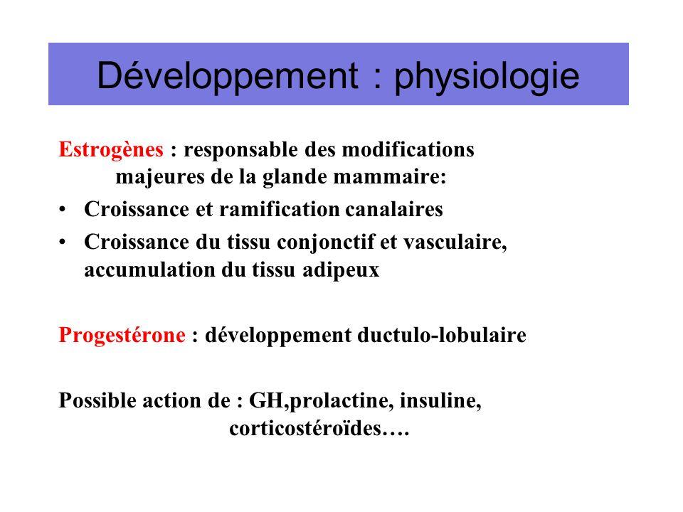 Développement : physiologie Estrogènes : responsable des modifications majeures de la glande mammaire: Croissance et ramification canalaires Croissanc