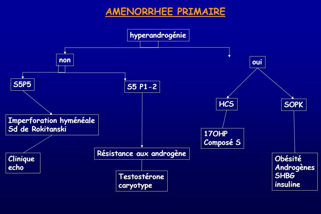 AMENORRHEE PRIMAIRE hyperandrogénie non oui S5P5 Imperforation hyménéale Sd de Rokitanski S5 P1-2 Résistance aux androgène Clinique echo Testostérone