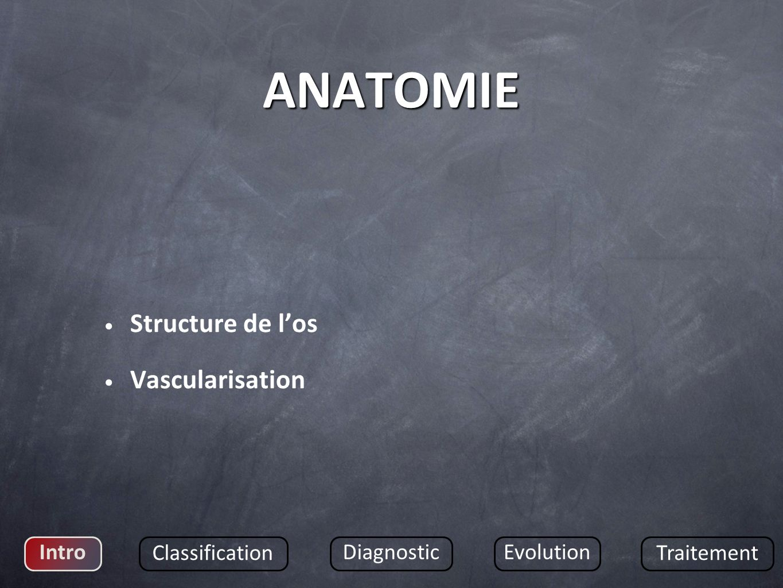 ANATOMIE Structure de los Vascularisation Intro Classification DiagnosticEvolution Traitement
