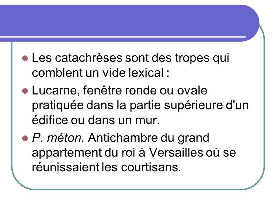Les catachrèses sont des tropes qui comblent un vide lexical : Lucarne, fenêtre ronde ou ovale pratiquée dans la partie supérieure d'un édifice ou dan