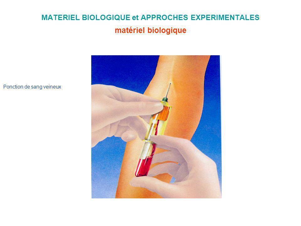 MATERIEL BIOLOGIQUE et APPROCHES EXPERIMENTALES matériel biologique Ponction de sang veineux
